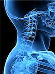 3d rendered x-ray illustration of a human neck and head Stock Photo - Royalty-Free, Artist: Eraxion, Code: 400-03967201