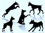 Dog silhouettes in different poses and attitudes Stock Photo - Royalty-Free, Artist: Guilu, Code: 400-03968563