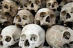 A pile of skulls from the Killing Fields in Phnom Penh, Cambodia. Stock Photo - Royalty-Free, Artist: sumners, Code: 400-03989097