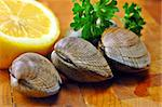 Three raw clams ready for steaming on a kitchen cutting board with lemon and parsley Stock Photo - Royalty-Free, Artist: karimala, Code: 400-03992656