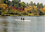 A racing shell with two people rowing with the full color of autumn leaves providing a contrast.