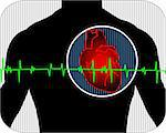 Illustration of heart with pulse graph Stock Photo - Royalty-Free, Artist: tillydesign, Code: 400-04008689