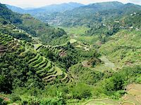 philippine terrace farming - Banaue rice terraces in Ifugao province, Philippines. Stock Photo - Royalty-Freenull, Code: 400-04012117