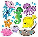 Marine fish collection - vector illustration. Stock Photo - Royalty-Free, Artist: clairev, Code: 400-04029468