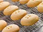 Wellington Button Biscuits on a Cooling Rack Stock Photo - Royalty-Free, Artist: MonkeyBusinessImages, Code: 400-04034697