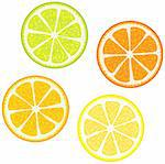 Vector illustration of Slices of citrus fruits: Orange, red grapefruit, lemon and lime. Great for making patterns