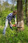 Young worker cutting old dead tree Stock Photo - Royalty-Free, Artist: sergi, Code: 400-04060944