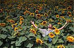 farmer standing in  a sunflower field with his arms spread out Stock Photo - Royalty-Free, Artist: Noam, Code: 400-04064849