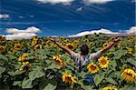 farmer standing in a sunflower field with his arms spread out Stock Photo - Royalty-Free, Artist: Noam, Code: 400-04064850