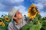 farmer standing in  a sunflower field Stock Photo - Royalty-Free, Artist: Noam, Code: 400-04064853