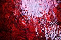 snake skin - Snakeskin texture - leather background Stock Photo - Royalty-Freenull, Code: 400-04068397