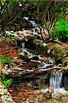 Creek with small waterfalls in japanese zen garden Stock Photo - Royalty-Free, Artist: Elenathewise, Code: 400-04069119