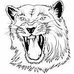 Wild Big Cat - black outline illustration as vector