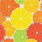Abstract citrus high-detailed background. Seamless. Vector illustration for your design.