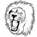 Lion 2010_01, Lion Head - Hand Drawn illustration