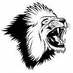 Lion 2010_02, Lion Head - Hand Drawn illustration