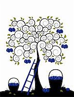 vector plum tree, ladder and baskets of plums on white background, Adobe Illustrator 8 format Stock Photo - Royalty-Freenull, Code: 400-04194937