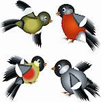 Set of bullfinches Stock Photo - Royalty-Free, Artist: Irins, Code: 400-04207235