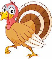 Walking Thanksgiving Turkey. Isolated on a white background. Stock Photo - Royalty-Freenull, Code: 400-04210478