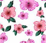 Pink flower seamless wallpaper. Vector illustration texture Stock Photo - Royalty-Free, Artist: emaria, Code: 400-04214455