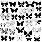 Big collection silhouette black butterflies for design isolated on white (vector) Stock Photo - Royalty-Free, Artist: OlgaDrozd, Code: 400-04217294