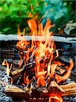 Closeup shot of camping fire Stock Photo - Royalty-Free, Artist: naumoid, Code: 400-04218399