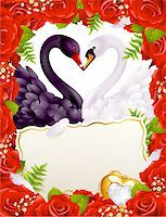 Greeting card with swans in love Stock Photo - Royalty-Freenull, Code: 400-04234388