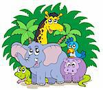 Group of African animals - vector illustration. Stock Photo - Royalty-Free, Artist: clairev, Code: 400-04235757
