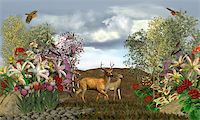 people mating - 2 deer on a stroll through their forest Stock Photo - Royalty-Freenull, Code: 400-04237611