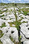 The Burren, a great rocky expanse in County Clare, Ireland   Stock Photo - Royalty-Free, Artist: Pyma, Code: 400-04238572