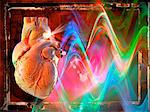 Human heart, artwork Stock Photo - Premium Royalty-Free, Artist: Westend61, Code: 679-04250669