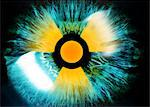 Iris with radiation warning sign Stock Photo - Premium Royalty-Free, Artist: Ikon Images, Code: 679-04250924