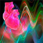 Human heart, artwork Stock Photo - Premium Royalty-Free, Artist: IIC, Code: 679-04251092
