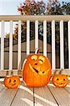 Jack O' Lantern Stock Photo - Premium Royalty-Free, Artist: Sheltered Images, Code: 618-04251657