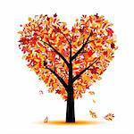 Beautiful autumn tree heart shape for your design Stock Photo - Royalty-Free, Artist: Kudryashka                    , Code: 400-04256363