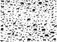 animals mix collection silhouette - vector Stock Photo - Royalty-Freenull, Code: 400-04259418