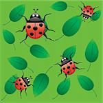 Cute ladybug on green pulpy leaves, seamless background, ladybirds on leaf, vector illustration Stock Photo - Royalty-Free, Artist: MarketOlya                    , Code: 400-04261595