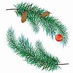 The pine branch with cones and toy Stock Photo - Royalty-Free, Artist: orensila                      , Code: 400-04262237