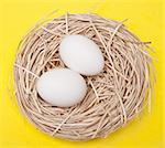 Eggs in a Nest on a Yellow Background. Stock Photo - Royalty-Free, Artist: brookebecker                  , Code: 400-04263743