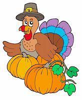 pilgrimartworks - Thanksgiving turkey with pumpkins - vector illustration. Stock Photo - Royalty-Freenull, Code: 400-04267992