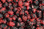 Lots of berries arranged at the background Stock Photo - Royalty-Free, Artist: ElnurCrestock                 , Code: 400-04277099