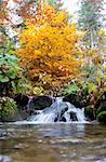 A small stream in the Carpathian Mountains in autumn Stock Photo - Royalty-Free, Artist: joyt                          , Code: 400-04278314