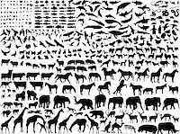 big collection of different animals silhouette - vector Stock Photo - Royalty-Freenull, Code: 400-04280168