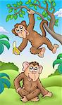 Two cartoon monkeys - color illustration. Stock Photo - Royalty-Free, Artist: clairev                       , Code: 400-04281221