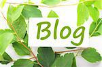 blog concept with word on nature still life Stock Photo - Royalty-Free, Artist: gunnar3000                    , Code: 400-04290570
