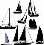 sailing boat - vector
