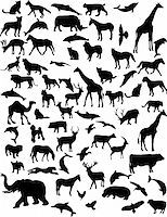 collection of 68 animals - vector Stock Photo - Royalty-Freenull, Code: 400-04297199