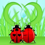 Red Ladybug Couple Under Heart Shape Grass Illustration