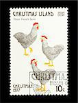 Part of a set of 12 mail stamp printed on Christmas Island depicting the Twelve Days of Christmas, circa 1977 Stock Photo - Royalty-Free, Artist: nelsonart                     , Code: 400-04299426