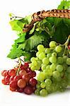Grapes and vine leaves in a basket Stock Photo - Royalty-Free, Artist: silencefoto                   , Code: 400-04299845